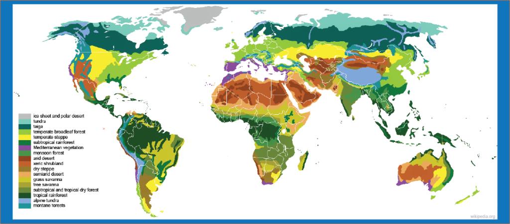 ekosistem bioma di dunia