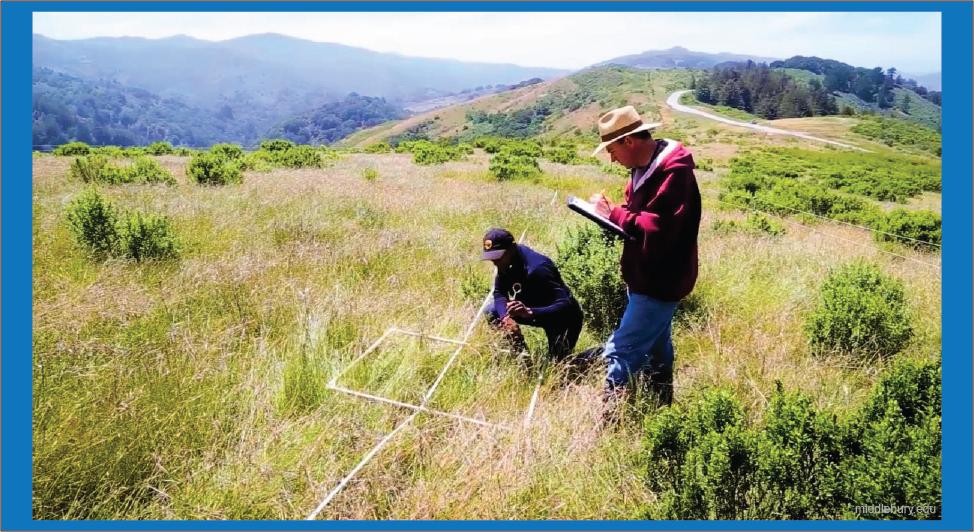 penelitian alam dalam perlindungan alam