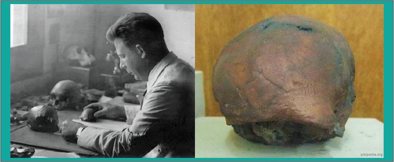 Von Koenigswald penemu manusia purba Pithecanthropus Mojokertensis