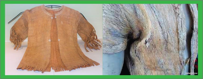 baju kulit pohon manusia purba