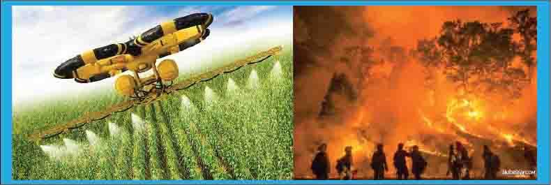 penyemprotan hama dan pembakaran hutan