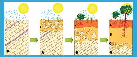 proses terbentuknya tanah