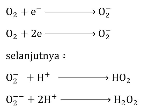 reaksi oksigen bebas