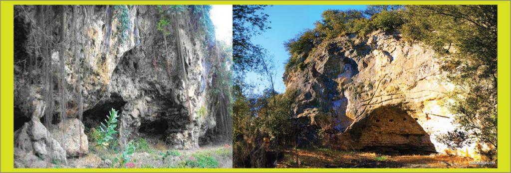 tempat tinggal gua manusia purba abris sous roche